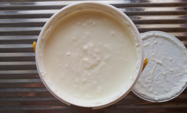 Probiotic Yogurt: Farm Fresh Natural Yogurt