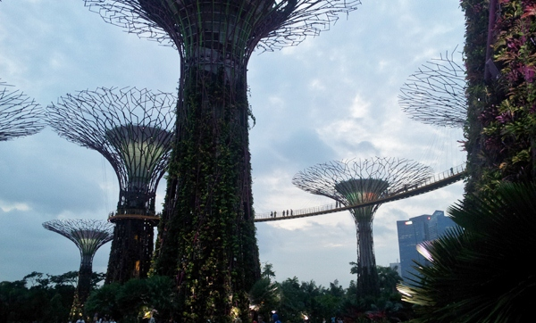 Gardens By The Bay Ticket Price